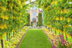 The gardens of Larnach Castle in Dunedin, New Zealand-------childhood play ground, but it was neglected and overgrown back then The Beautiful Country, Beautiful Places, Great Places, Places To See, Places Around The World, Around The Worlds, Dunedin New Zealand, Museum Hotel, New Zealand Travel