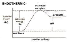 Endothermic - Potential Energy Diagram