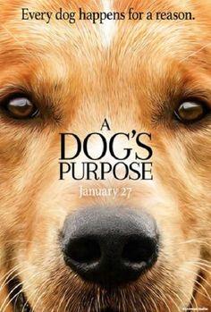 A DOG/'S JOURNEY MOVIE POSTER DS ORIGINAL Version C 27x40 DENNIS QUAID JOSH GAD
