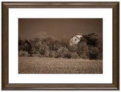 """11"""" x 14"""" Traditional Photography Prints / Wall Décor Landscape Photograph: Abandoned Barn In The Trees - Monochromatic. View all of the stunning Landscape Photos by Nature and Landscape Photographer Melissa Fague at:  https://www.etsy.com/shop/PIPAFineart Limited Edition Fine Art landscape photography prints and canvas wraps are also available in a variety of sizes."""