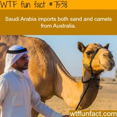 Things you never knew about Saudi Arabia - WTF fun facts