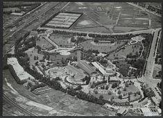 blijdorp rotterdam 1964