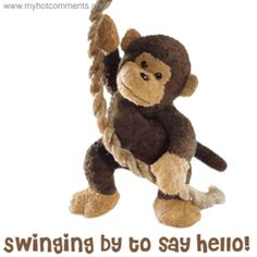 Funny Monkey With Banana Funny Gif - Funny Monkey Gifs Romantic Good Morning Quotes, Good Morning Funny Pictures, Good Morning Image Quotes, Afternoon Quotes, Good Night Quotes, Good Morning Wishes, Emoji, Hello Pictures, Hugs And Kisses Quotes