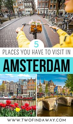 5 Places You Must Visit in Amsterdam During Your Netherlands Trip I What Not To Miss in Amsterdam, The Netherlands I Things to do in Amsterdam I Amsterdam Itinerary I What to Visit in Amsterdam I Amsterdam Attractions I Alternative Things to Do in Amsterdam I How to Visit Amsterdam I Tips for Visiting Amsterdam I Tips and Tricks for Amsterdam Travelers I Best Things to See in Amsterdam I Hidden Gems in #amsterdam #thenetherland #holland Road Trip Europe, Europe Travel Guide, Europe Destinations, Travel Guides, Amsterdam Travel, Amsterdam Itinerary, Visit Amsterdam, European Travel Tips, European Vacation