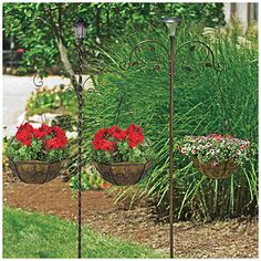 """84"""" Solar Lighted Double Shepherd Hooks at Big Lots. This pic. doesn't show them well, but they're gorgeous.  Two different kinds, but can only buy one for price.  One is my fav!"""