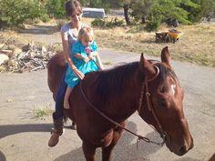 #horses I realfoodfamily.com