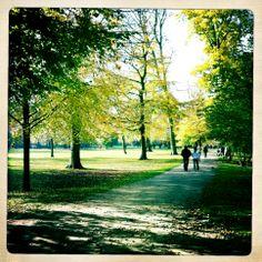 Frederiksberg Have  #frederiksberghave