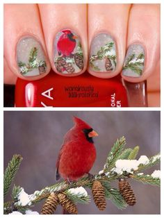 Freehand wintery nails with cardinal