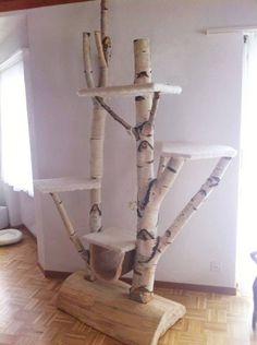 Kirschbaum als Kratzbaum - Katzen Forum