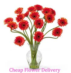 http://bestflowerwyz.blogspot.in/ FlowerWyz Online Flowers Delivery | Cheap Flowers Delivered