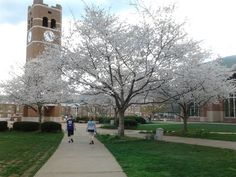 This is a picture of Western Carolina University in the Spring of 2012.