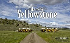 Take me to Yellowstone