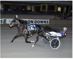 Vernon, N.Y. -- Trainer Ron Burke and driver Jim Morrill, Jr. teamed up to sweep a pair of $61,300 New York Sire Stakes events for harness racing 3-ye&hellip