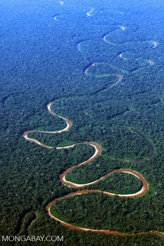 Airplane view of a twisting river in the rainforest of the Amazon basin in Peru - photo by Rhett A. Butler, via travel.moongabay