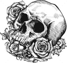 Buy Human Skull with Roses on White Background by on GraphicRiver. A skull with roses on white background Day Of The Dead Skull Tattoo, Day Of The Dead Drawing, Day Of The Dead Artwork, Skull Rose Tattoos, Body Art Tattoos, Art Drawings Sketches, Skull Drawings, Tattoo Drawings, Skull Crafts