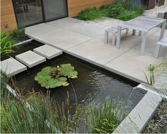 Interior, Backyard Pond Water Plant Fish: Making a Backyard Fish Pond