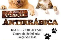 SEXTA-FEIRA (22) É O DIA 'D' DA CAMPANHA DE VACINAÇÃO ANTIRRÁBICA EM JOÃO DOURADO.   Lucas Souza Publicidade