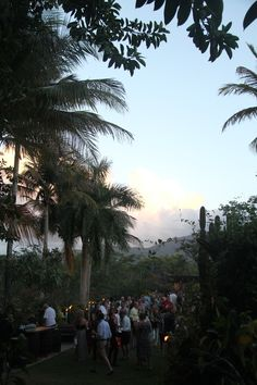 Find the venue fit for your group. In Puerto Rico, that means rainforest and tropical sunsets.