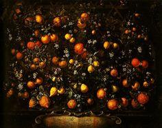 best  citrus perfumes | Cafleurebon - Perfume and Beauty Blog