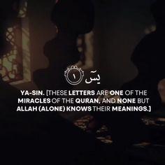 Allah Quotes, Muslim Quotes, Quran Quotes, Islamic Status, Islamic Messages, Islamic Inspirational Quotes, Islamic Quotes, Happy Ramadan Mubarak, Beautiful Quran Verses