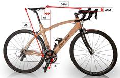 Cargo Bike, Mtb Bike, Wood Bike, Bicycle Pedals, Cool Bicycles, Bike Life, Mountain Biking, Biker, Cycling