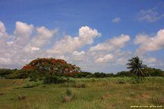La Grande Terre - Guadeloupe