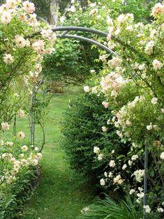 Resultados de la Búsqueda de imágenes de Google de http://www.mooseyscountrygarden.com/rose-garden/rose-garden-arch.jpg