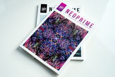Neoprime Magazine Issue 2 Preview 2.jpg