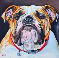 "bulldog perfection 24x24"" oil on canvas by dragoslav milic"