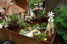 Festive Fall Fairy Garden with tiny pumpkin gourds and mini accessories