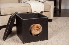 This designer ottoman pet bed complements a room's furnishing in almost any home with its stylish brown color and durable faux alligator skin. It can function as a comfy ottoman, footstool, and pet house all in at the same time.