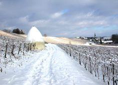 Snow in Rheinhessen