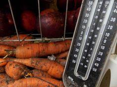 Refrigerator root cellar power cost