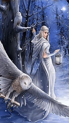 LADY WITH OWLS WINTER SNOW GIF
