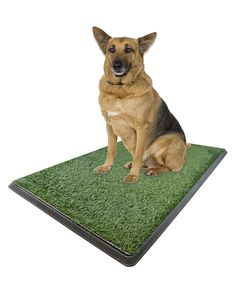 Large Pet Potty Patch - Dog Training Bathroom Pad Indoor Or Outdoor Use 25' X 20' X 2' -- Want additional info? Click on the image.
