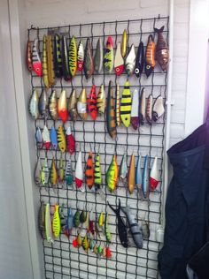 Bait and lures storage solution