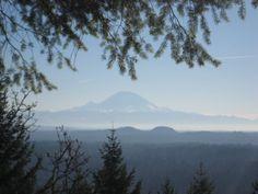 Cougar Mountain Regional Wildland Park  Issaquah, Washington  View of Mt. Rainier