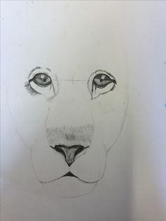 Dit is het laatste wat ik heb getekend op het grote vel ik heb de ogen verbetert door ze groter te maken en ze beter te arceren