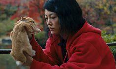 Kumiko the treasure hunter (2015) Ad Hominem Enterprises Lila 9th Productions United States