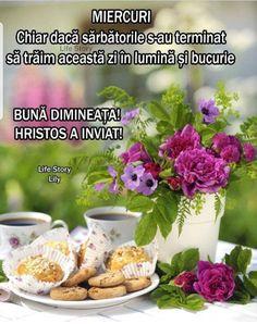 Breakfast, Plants, Food, Morning Coffee, Essen, Meals, Plant, Yemek, Eten