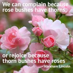 Gardening Quotes: We can complain because rose bushes have thorns, or rejoice because thorn bushes have roses. – Abraham Lincoln