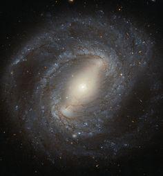 NGC 4394 είναι το αρχετυπικό ραβδωτός σπειροειδής γαλαξίας με σπειροειδείς βραχίονες που προκύπτουν από τα άκρα μιας ράβδου που κόβει μέσω του γαλαξία