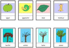 woordkaarten appels
