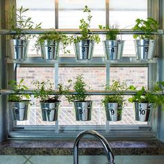 """Even in the colder months, this window herb garden brings life to your kitchen and is an easy weekend project! We'll show you how to make it at the link…"""