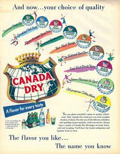 Vintage Canada Dry Beverage Ad, 1955