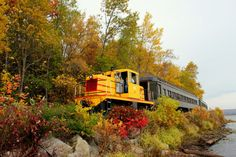 Travel | Minnesota | Trains | Train Rides | Train Trips | Duluth | Fall | Autumn | Fall Colors | Leaves | Foliage | Beautiful Places | Things To Do | Attractions | Fun Things | Lake Superior | North Shore