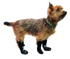 Handicapped Pets - Walkin' Dog Boots