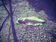 Rêves dans les bois