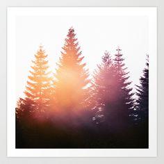 Morning Glory by Tordis Kayma