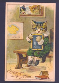 Rare CAT Student IN After School Detention Nister G H Thompson Postcard | eBay